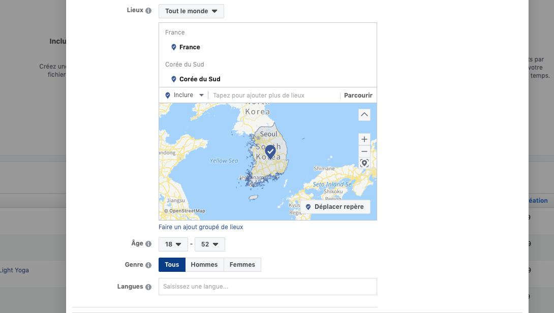 Comment localiser ses Facebook Ads ?